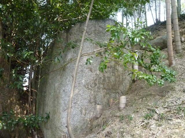 そんなに大きな岩には見えないのですが・・・