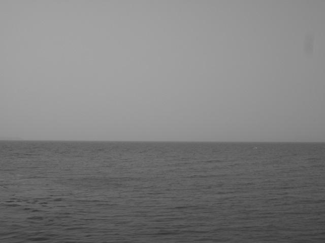 仁尾の海岸です