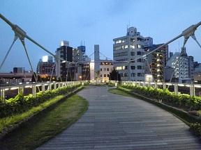 橋の上には芝生や植栽が