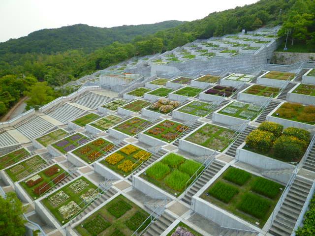 この花壇は阪神淡路大震災の犠牲者の鎮魂のためにつくられたんだそうです