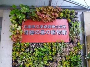 ジャパンフローラ2000 淡路花博の舞台でした