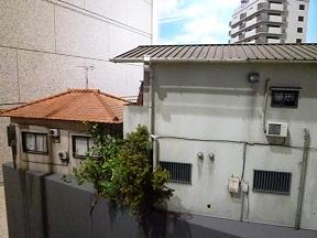 大きめの隣の家