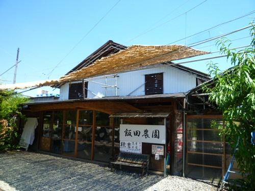 香川県で桃といえば飯山と思ってましたが