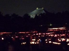 大仏殿の屋根が見えてます