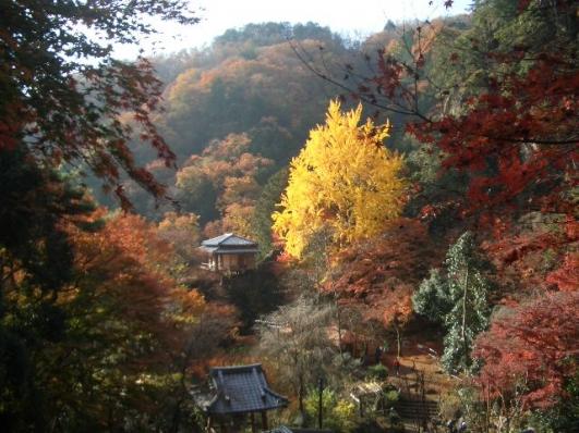 朝の行道山浄因寺