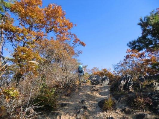 露岩の道を