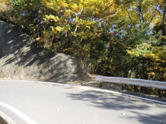車道を横断する