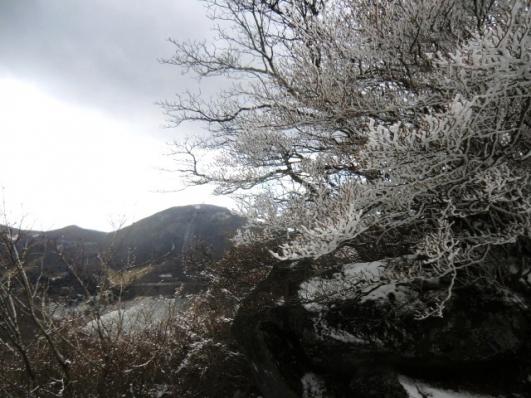 霧氷と地蔵岳