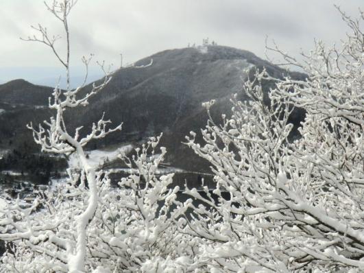 霧氷越に地蔵岳