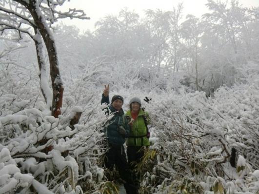 山頂への道、霧氷の海