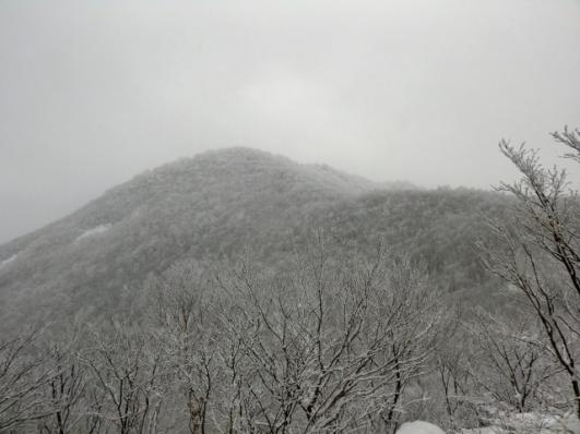 向かう駒ヶ岳