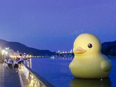 10m級の巨大アヒルのラバー・ダックは海フェスタのシンボルアートで平和の使者です