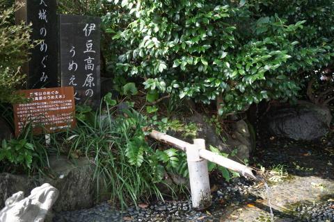 FC25013izuko.jpg