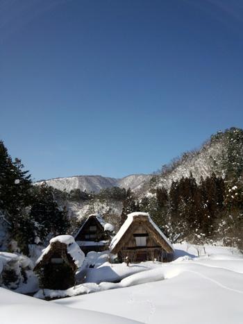 2月26日 下ゴソ②