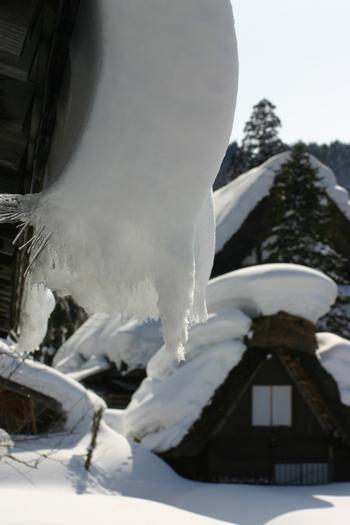 ぶら下がる雪①