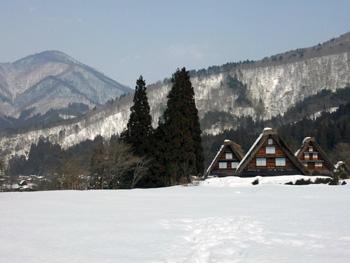雪の真ん中までイッテ 記念写真 最高