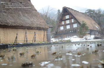飛騨観光カンパニ― Photo 阿武 様より提供