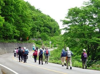 白山スーパー林道ぎふネイチャーウォーキング2013