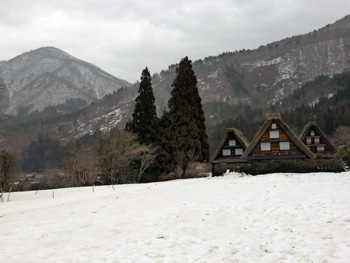 今朝は白く雪が積もり