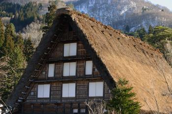 本堂では、京都の東寺や醍醐寺にもある、浜田泰介画伯の障壁画を見る事ができる。