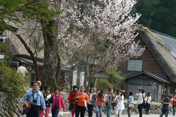 海外観光客 白川郷を散策