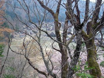 遊歩道 から 見た 白川郷荻町合掌集落