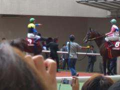 kobe_shinbunhai2005_3.jpg