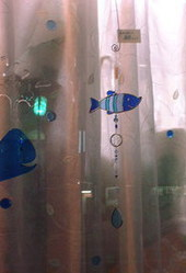 cans 魚