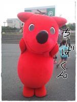 kn1_20130506195733.jpg
