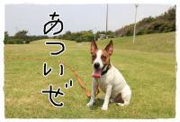 kn2_20130526163408.jpg