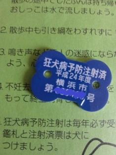 DSC01984_20120629230432.jpg