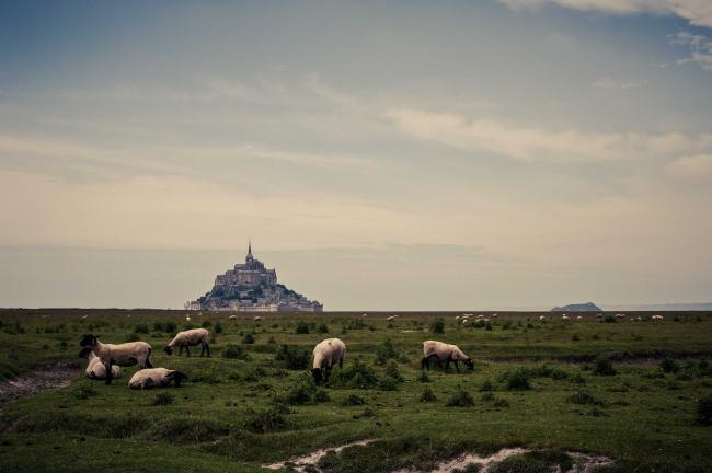Le Mont Saint Michel 2013