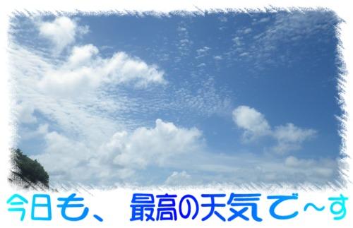 今日も、最高の天気で~す