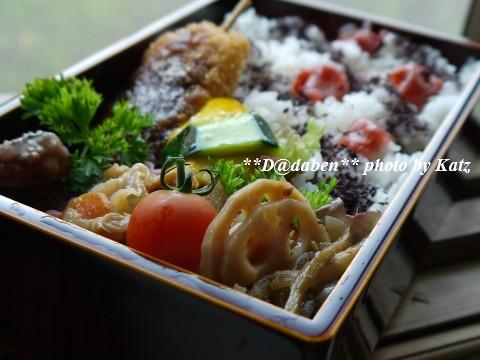 20110822 Lunchbox