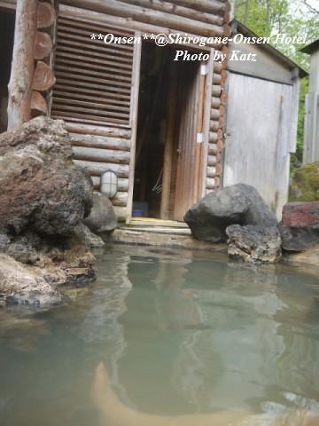 湯元白金温泉ホテル 4
