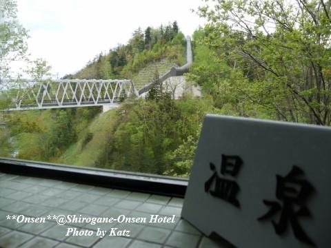 湯元白金温泉ホテル 18