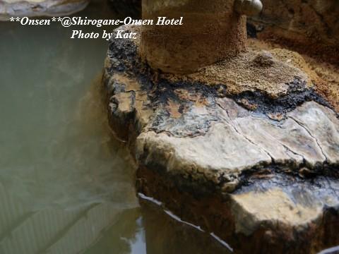 湯元白金温泉ホテル 15