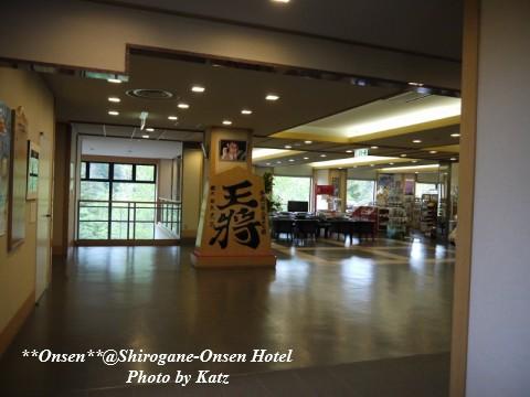 湯元白金温泉ホテル2