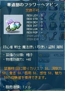 Maple130410_174046.jpg