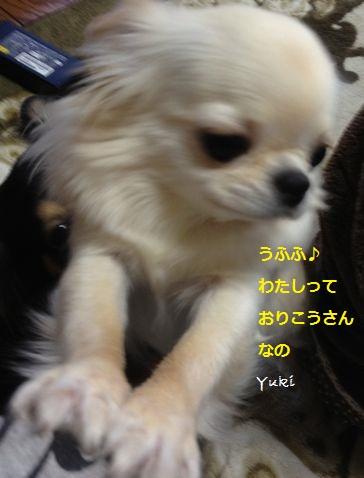 a5_20130507223932.jpg