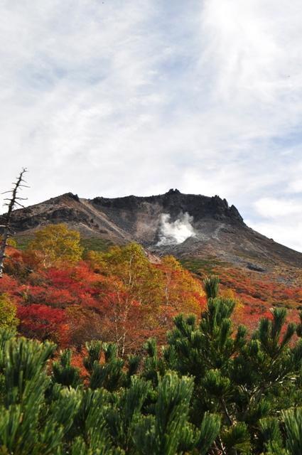 姥ヶ原から茶臼岳