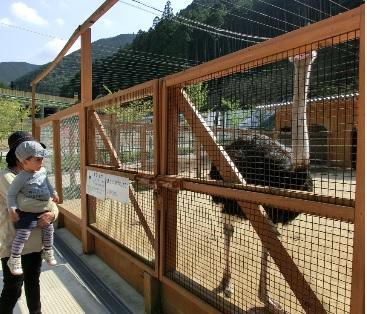 大内山動物園3