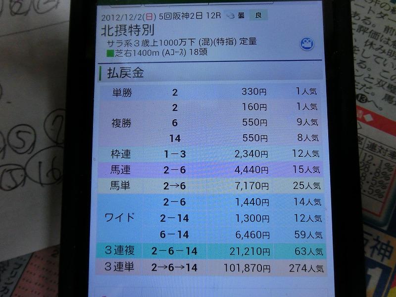 CIMG1671_20121203070939.jpg