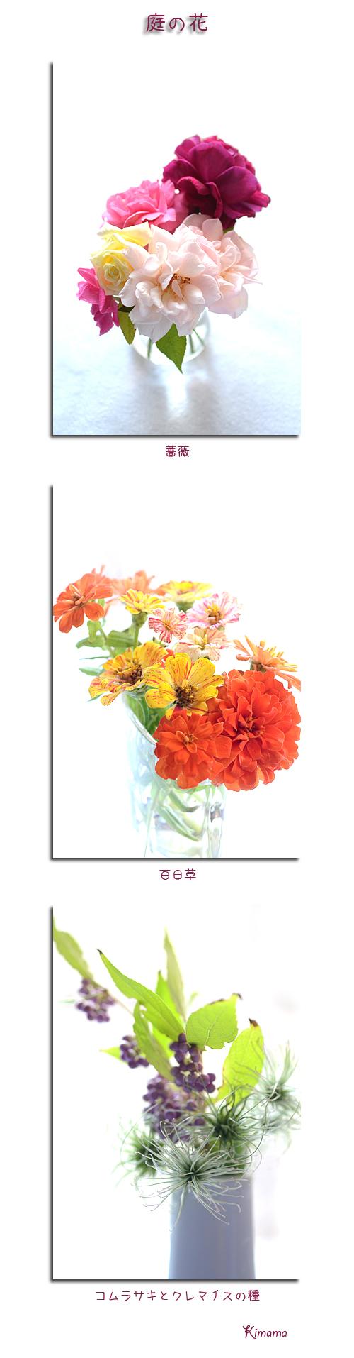 10月7日庭の花