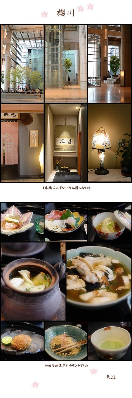 11月15日櫻川
