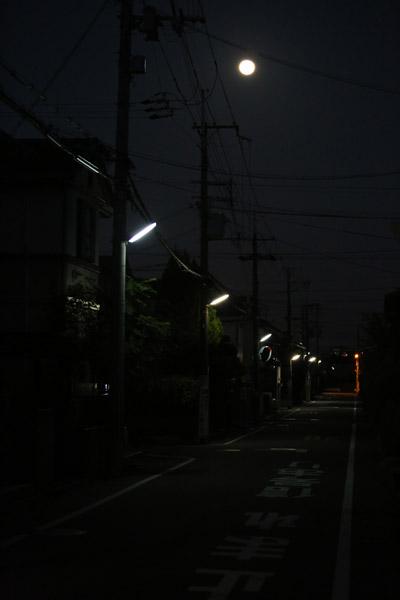 0V5A3446.jpg