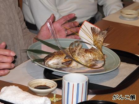 喜寿祝い がんこ鯛
