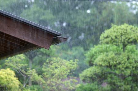 梅雨入り!きのさき温泉も雨・・