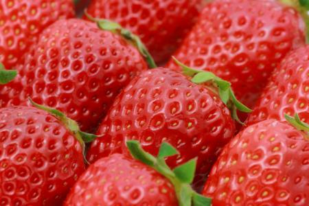 イチゴに花粉症抑える効果…