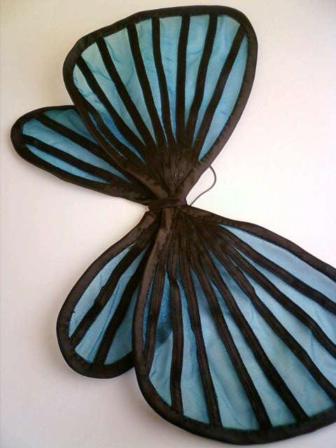 butterfly_wing_a.jpg